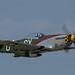 P-50 Gunfighter
