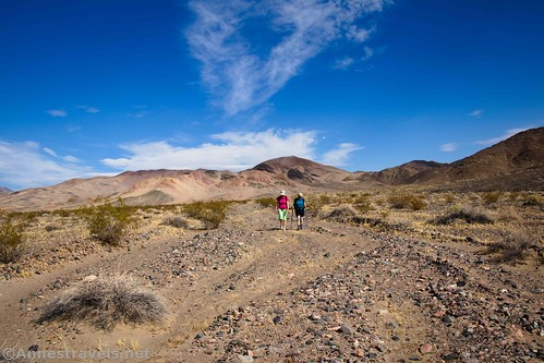 On the way back to the parking area at Saratoga Springs, Death Valley National Park, California
