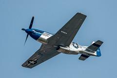 Moonbeam McSwine P-51 Mustang