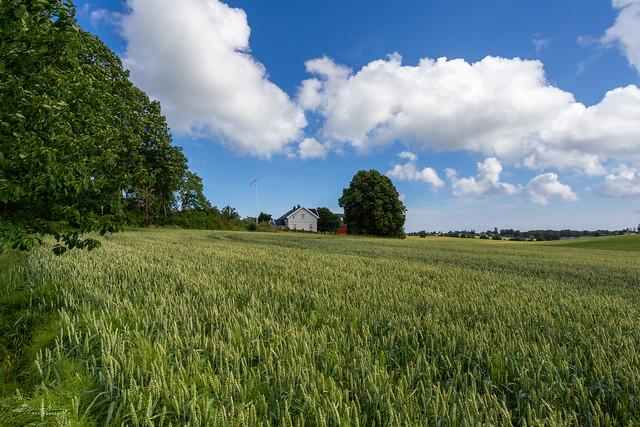 The Røren view