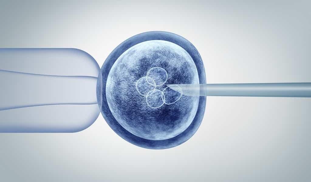 améliorer-la-fertilité-en-étudiant-influence-des-gènes-sur-la-ménopause