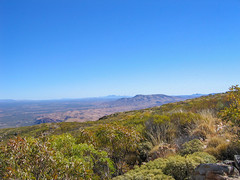 Eastly View from Mt Sonder, Tjoritja/West McDonnell National Park, Northern Territory