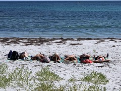 Line on the beach