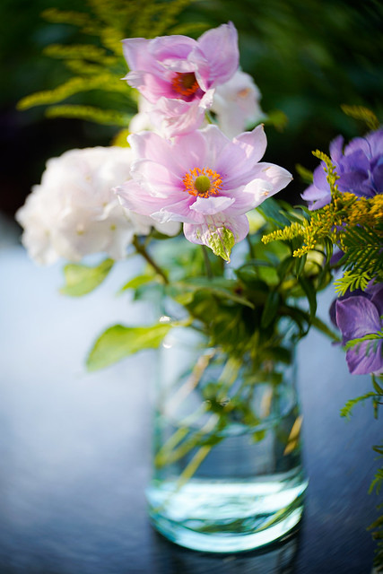 Flowers from the garden #214