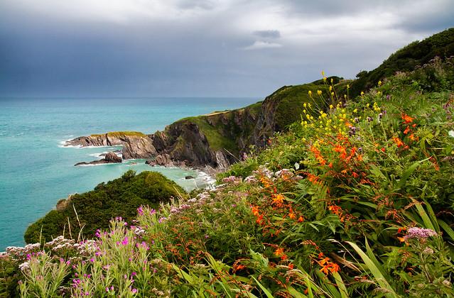 Carribean Hele Bay