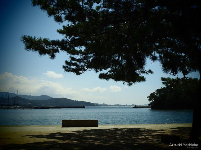 OLYMPUS PEN E-P7 Shooting in Fukuoka