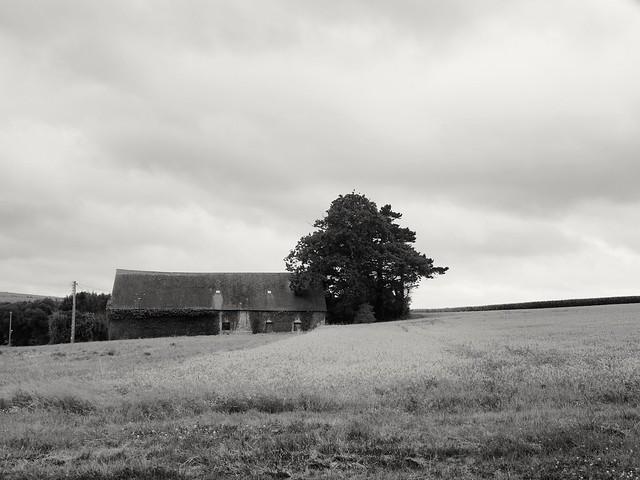 La vieille ferme the old farm