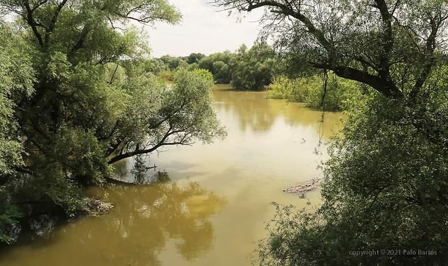 021Jul 20: Morava River Flooding 6