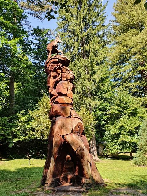 Le séquoia est devenu totem - The redwood has become a totem