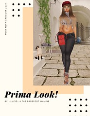 Prima Look!!!! Free Gifts!!!