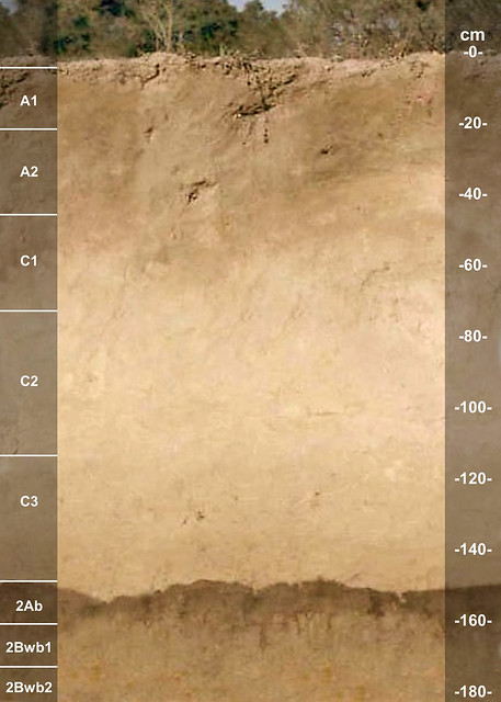 Atiras soil series