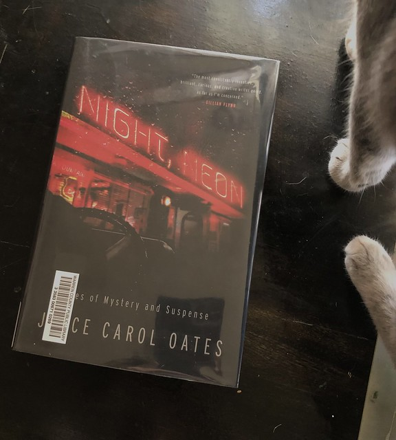 Night, Neon  (with Otto's feet)