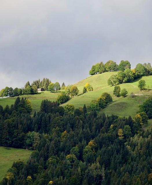 Light and shadow. Near Kitzbühel, Tirol, Austria.