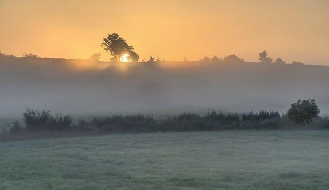 *golden sunrise in the valley*