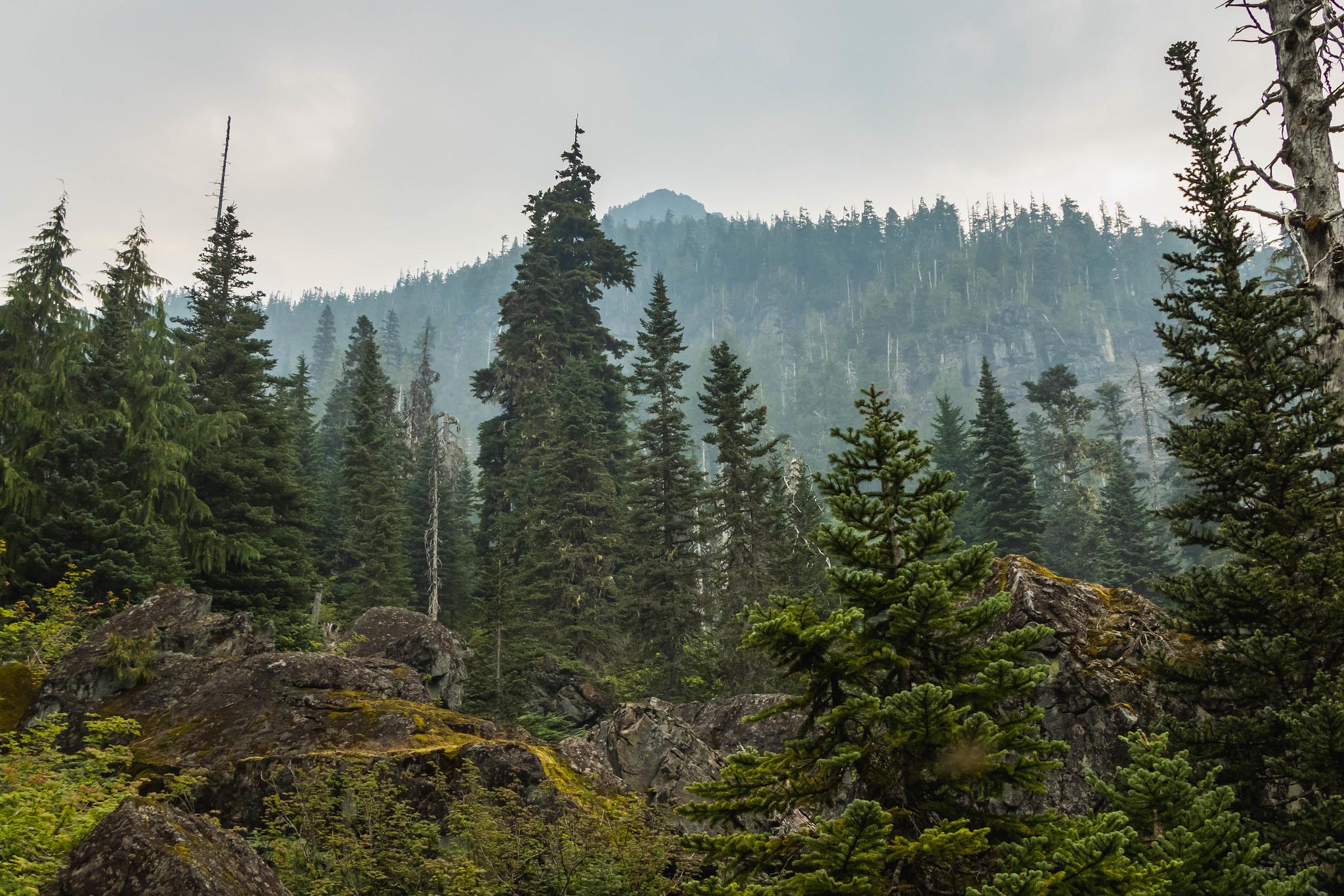 Mount Rudderham summit poking out