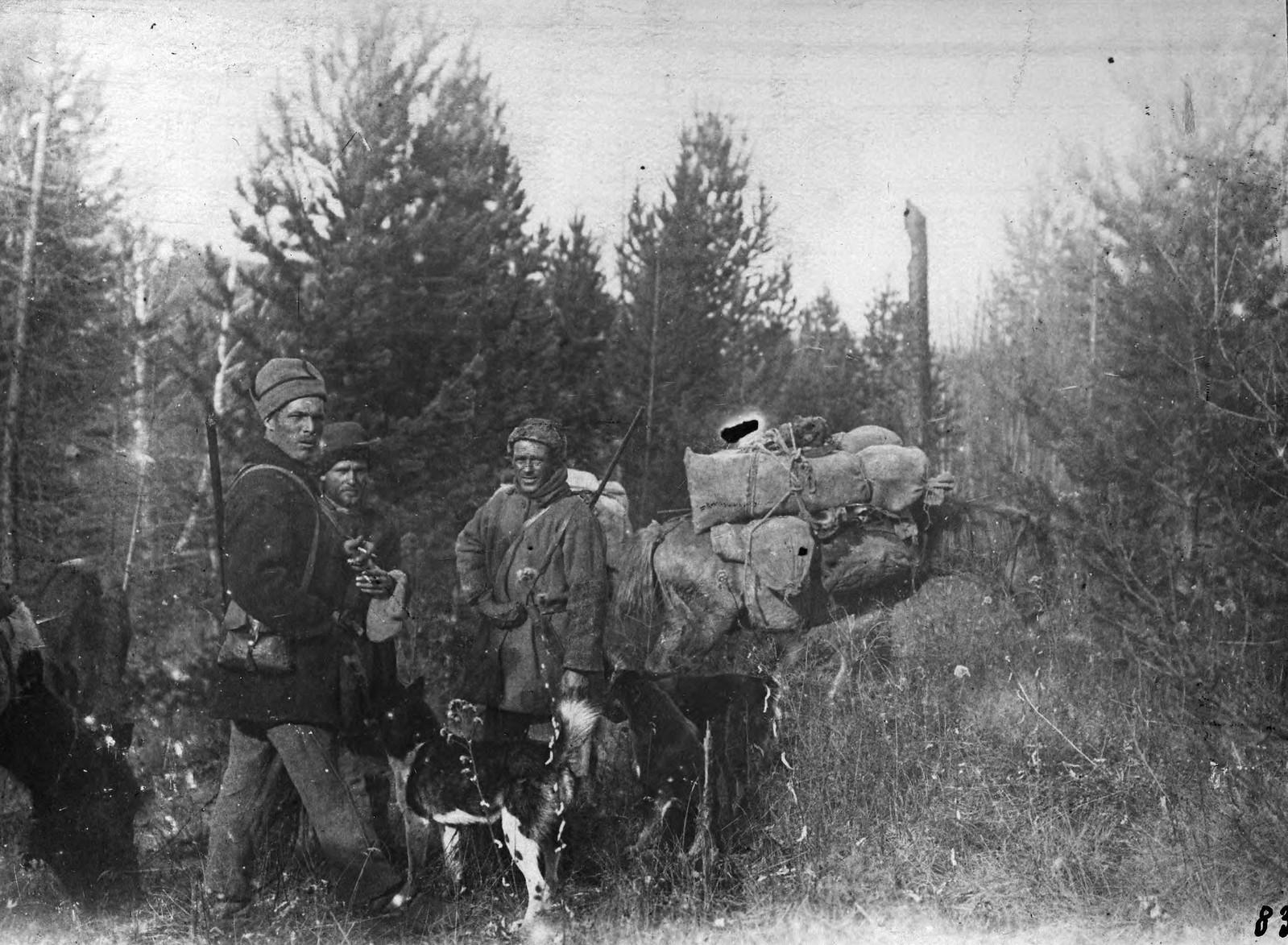 Жигаловские охотники выходят на «белковье». Старая гарь на речке Б.Берея.