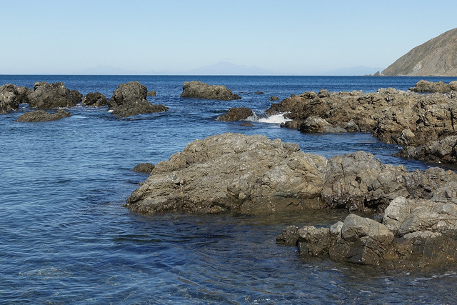 Ōwhiro Bay - Wellington