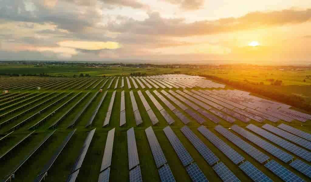 des-microbes-alimentés-par-énergie-solaire-pour-alimenter-le-monde