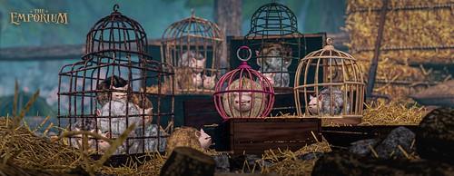 [The Emporium] Pet Cages