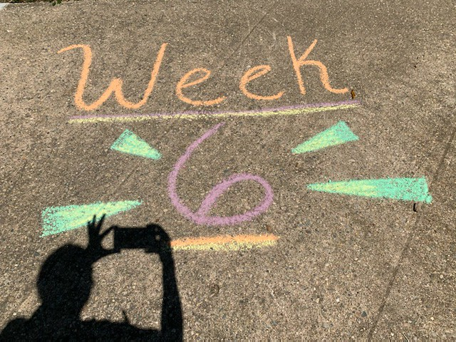 Week 6 2021 Newsletter