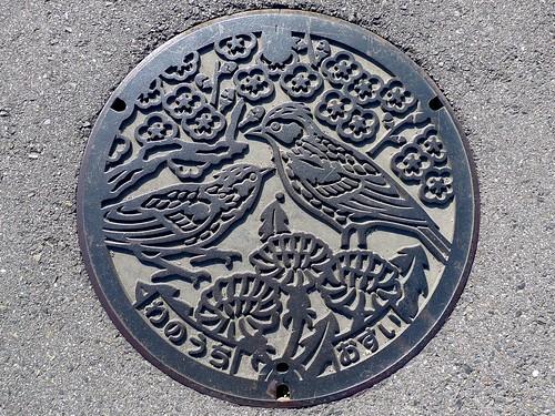Wanouchi Gifu, manhole cover (岐阜県輪之内町のマンホール)