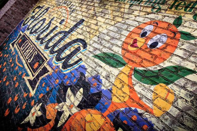 Famous Florida Citrus: Orange Birld