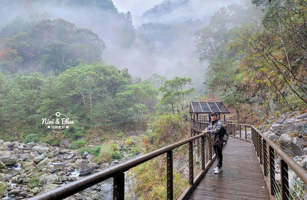 八仙山 BOB登山步道 谷關景點04