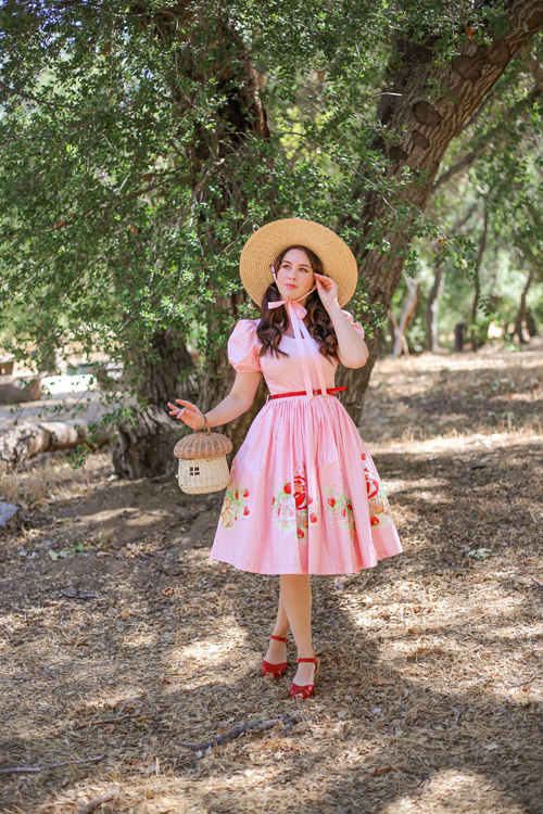 Sarsparilly x Strawberry Shortcake The Cutest Berry In The Patch Dress