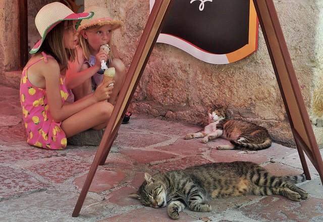 Ice-cream and kitties.