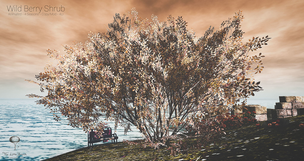 The Little Branch – Wild Berry Shrub – Wanderlust Weekend, 50L