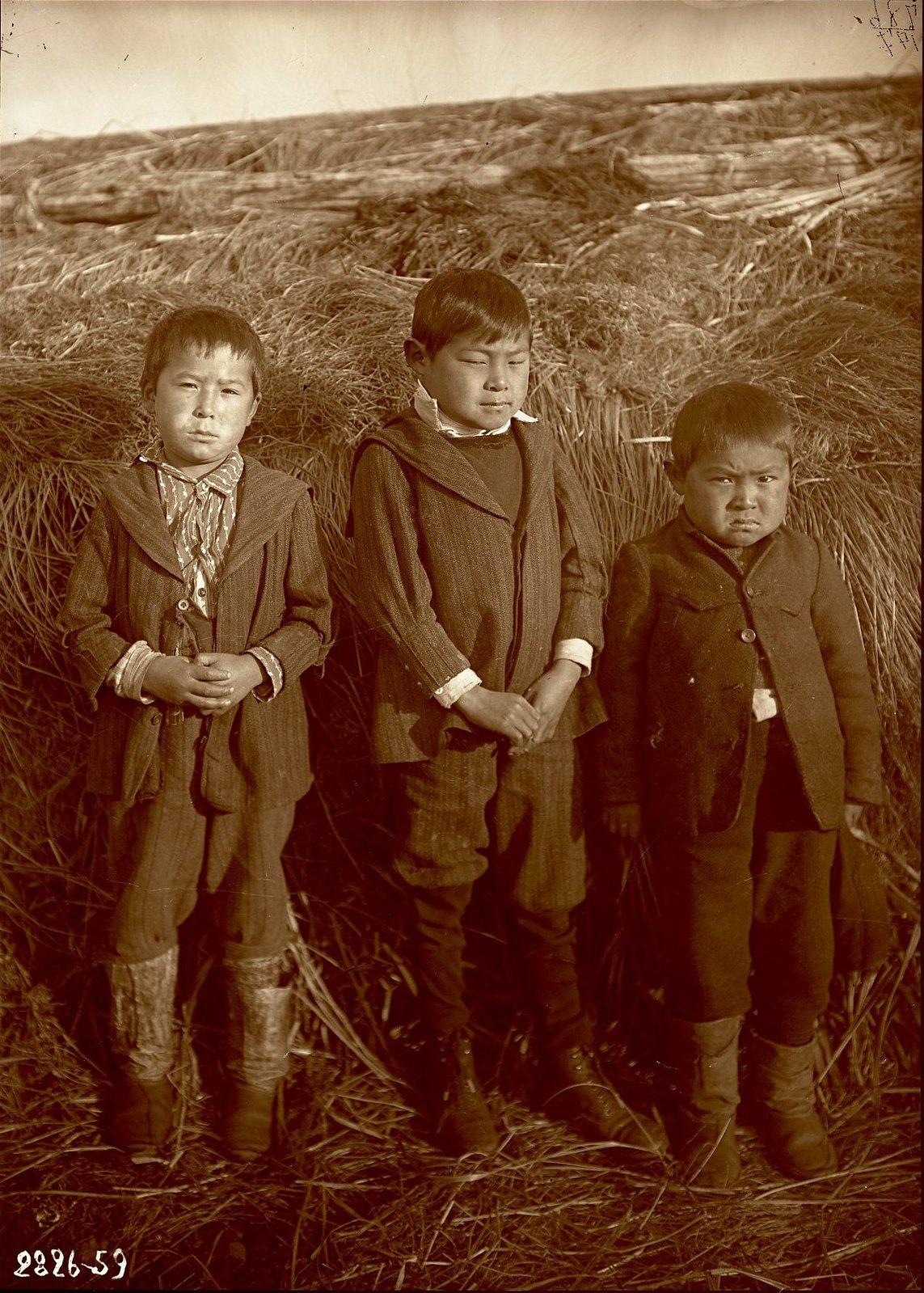 1909. 30 ноября. Алеутские мальчики. Умнак остров, с. Никольское
