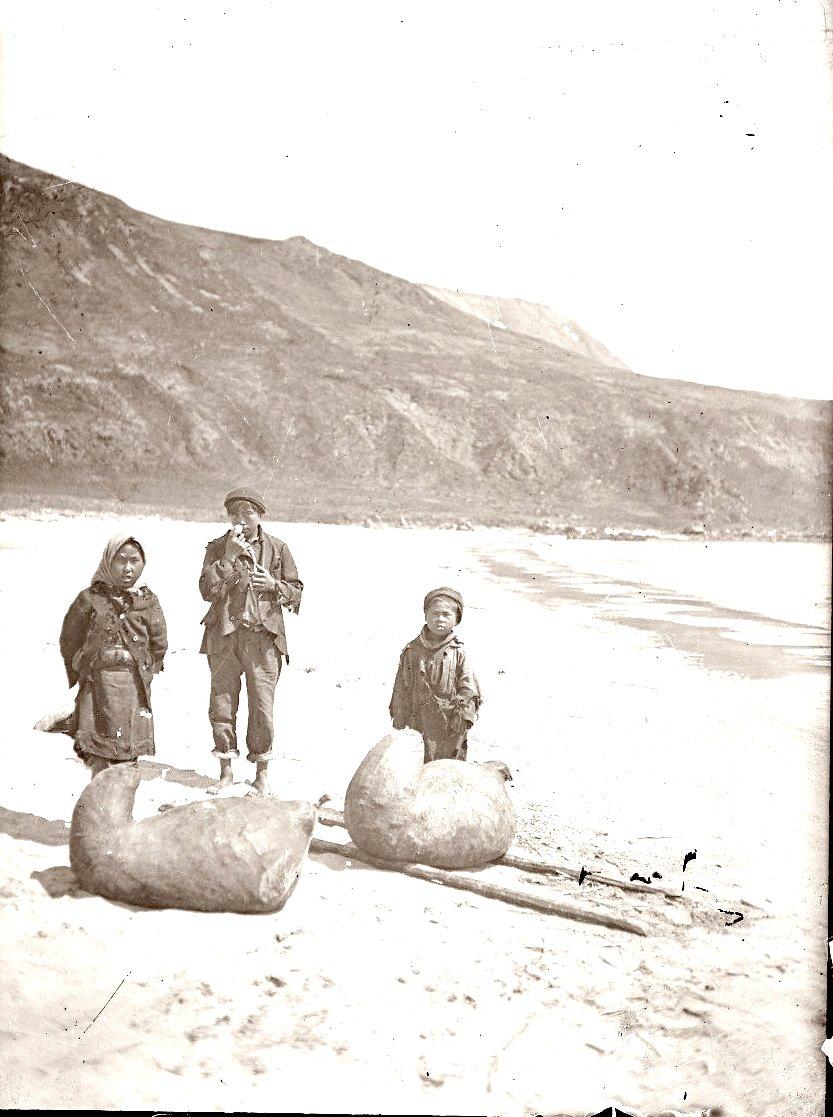 1909. 26 июля. Алеуты собираются нести желудки сивучей с рыбой. Атту остров.