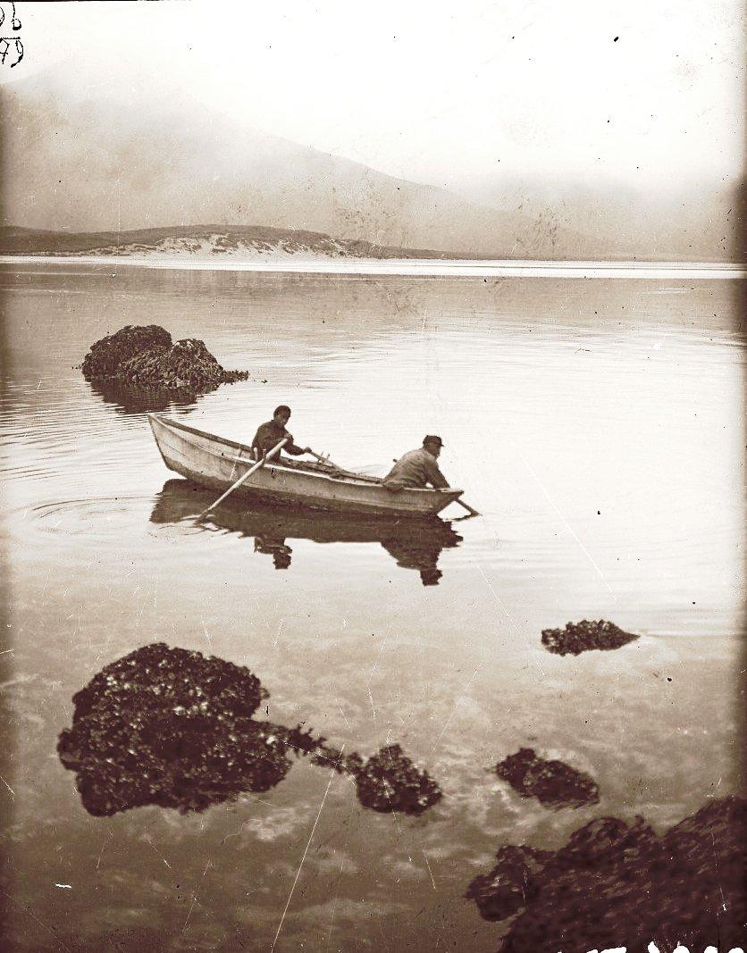 1909. 3 августа. Алеуты ловят осьминогов. Атту остров