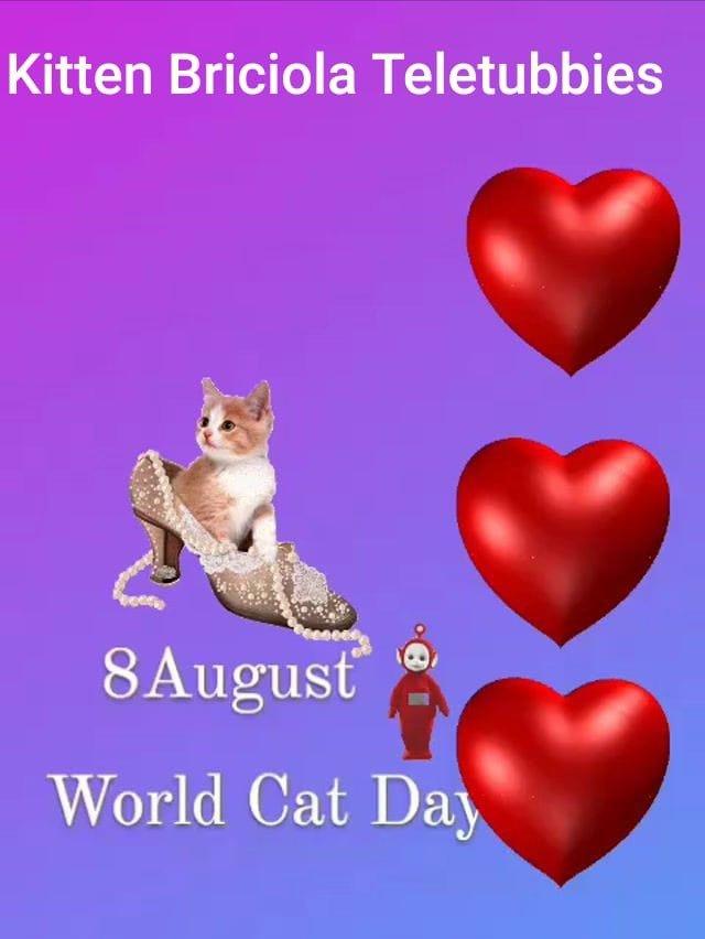 International Cat Day 😻❤️ August 8