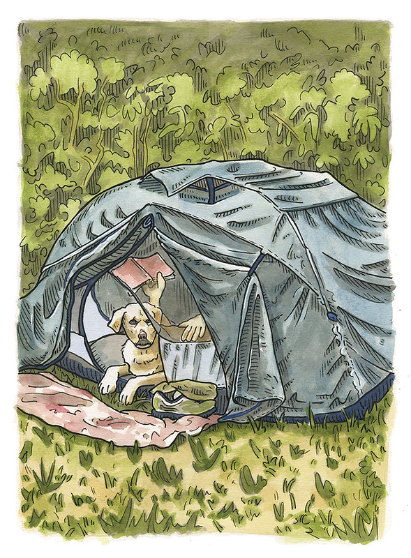 Willa in the Tent