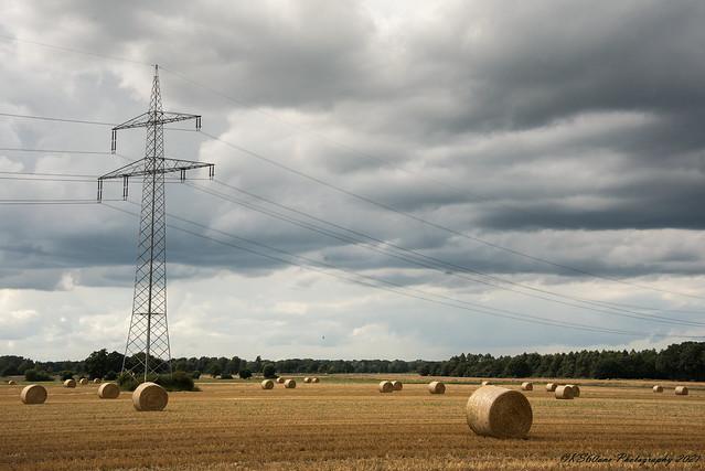 ... Heuernte / hay harvesting / 01014 ...