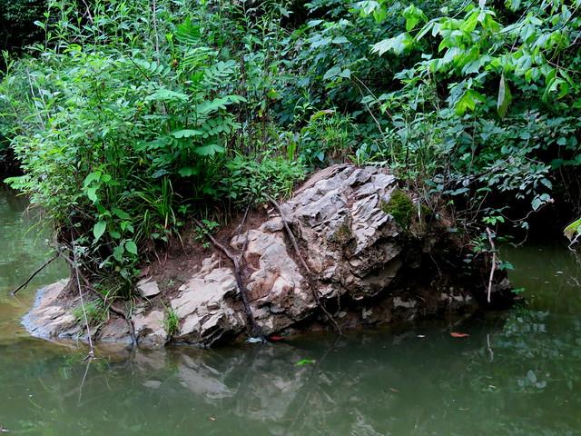 On thr bank of Nolin River.