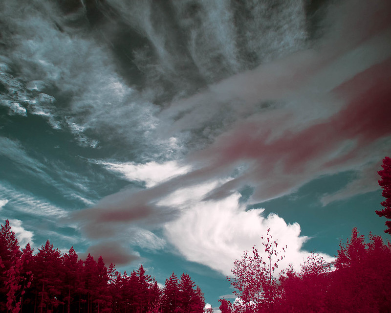 Infrared of the day 71