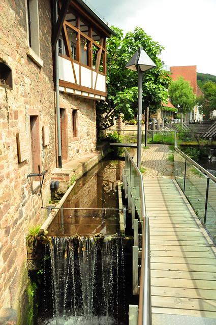 August 2021 ... Schriesheim: Ölmühle, Kanzelbach, Eisbecher ... Brigitte Stolle