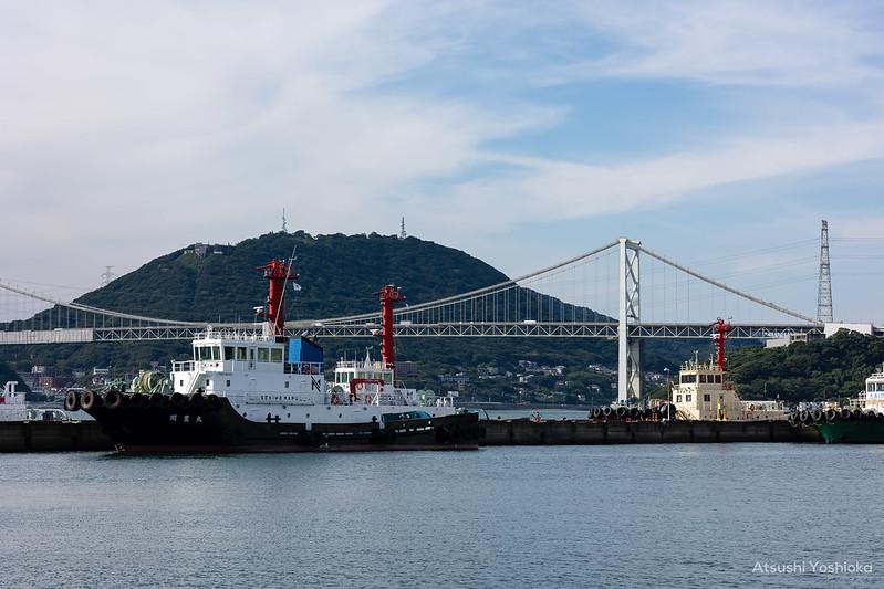 Canon RF85mm F2 MACRO IS STM Shooting in Fukuoka