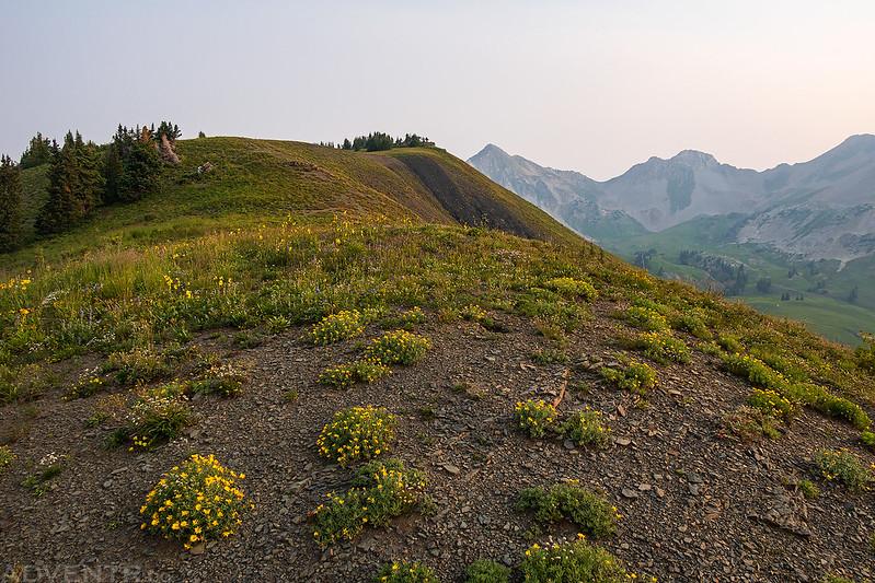 Walk To The Summit