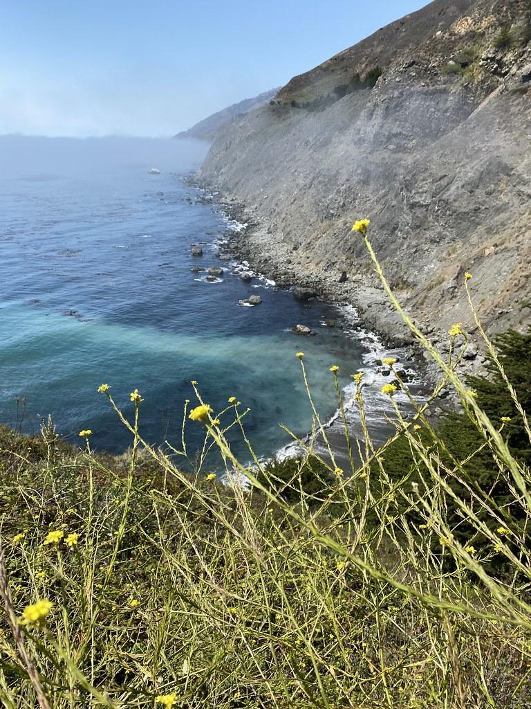 Sendero del acantilado de Ragged Point