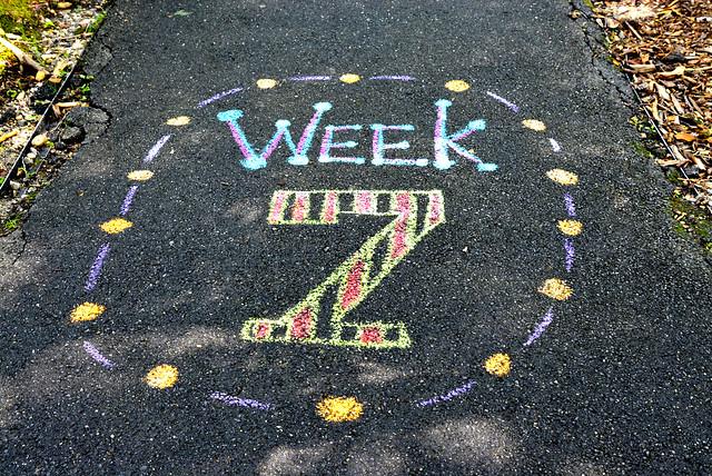 Week 7 2021 Newsletter