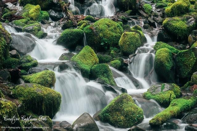 Misty Green Serenity