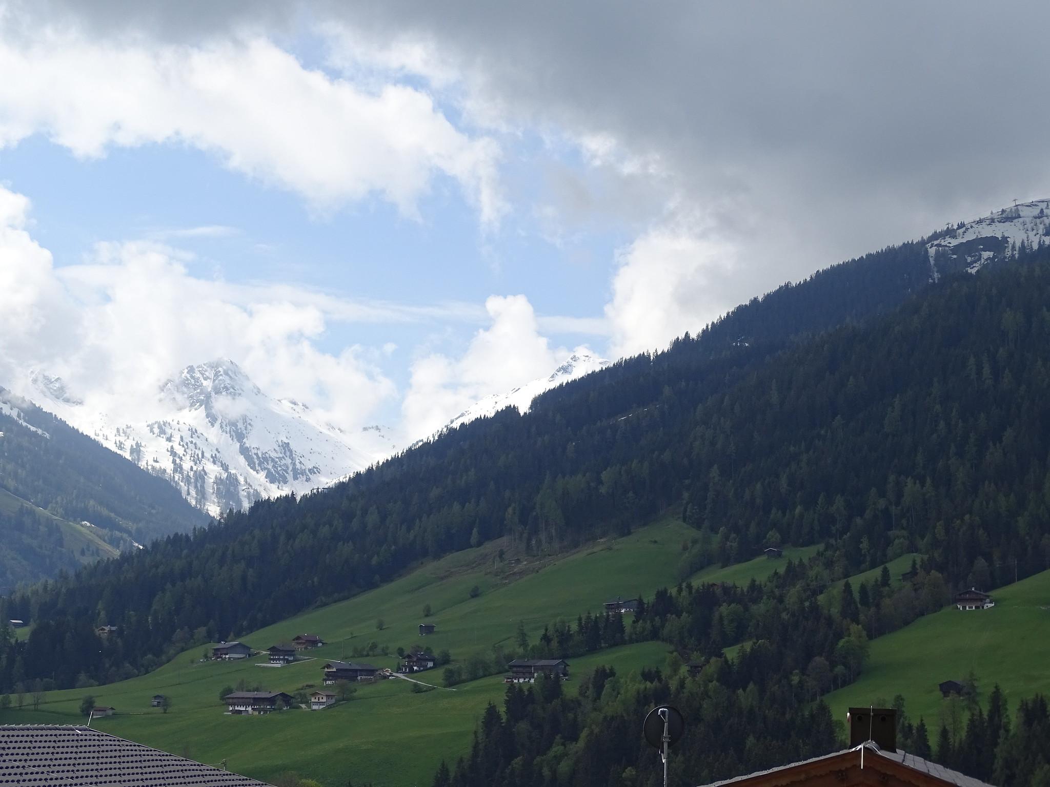 Alpbach montañas y flora del valle del río Eno estado de Tirol Austria