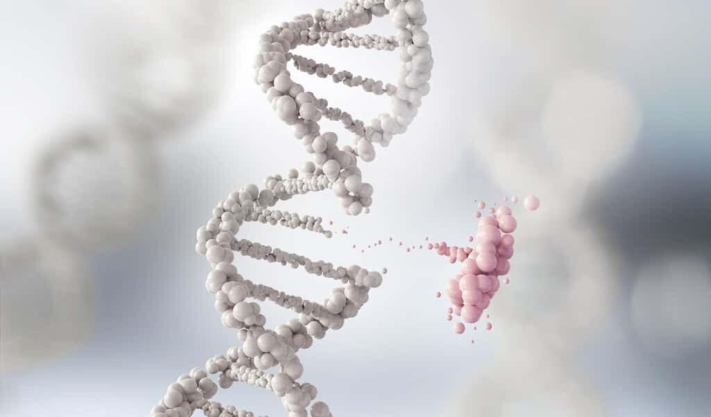 une-thérapie-CRISPR-pour-une-maladie-sanguine-donne-de-bons-résultats