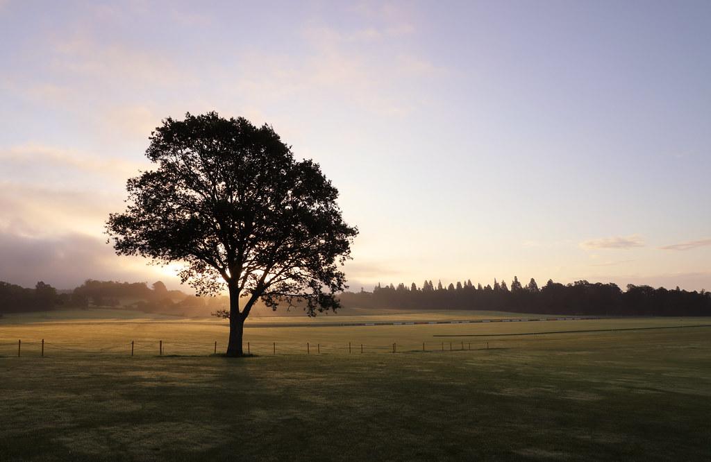 Cowdray Polo Field