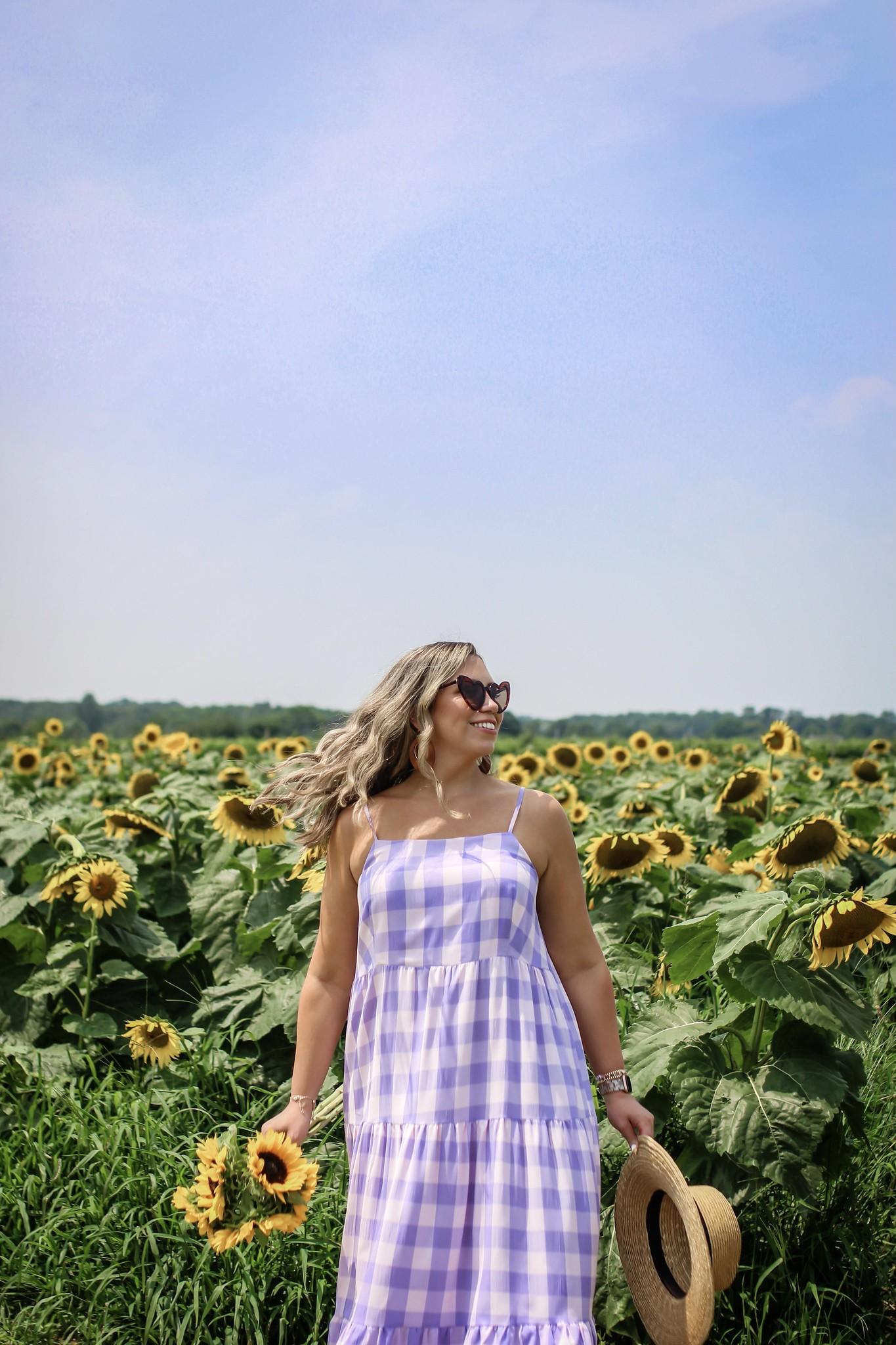 Summer flower fields to visit in New York