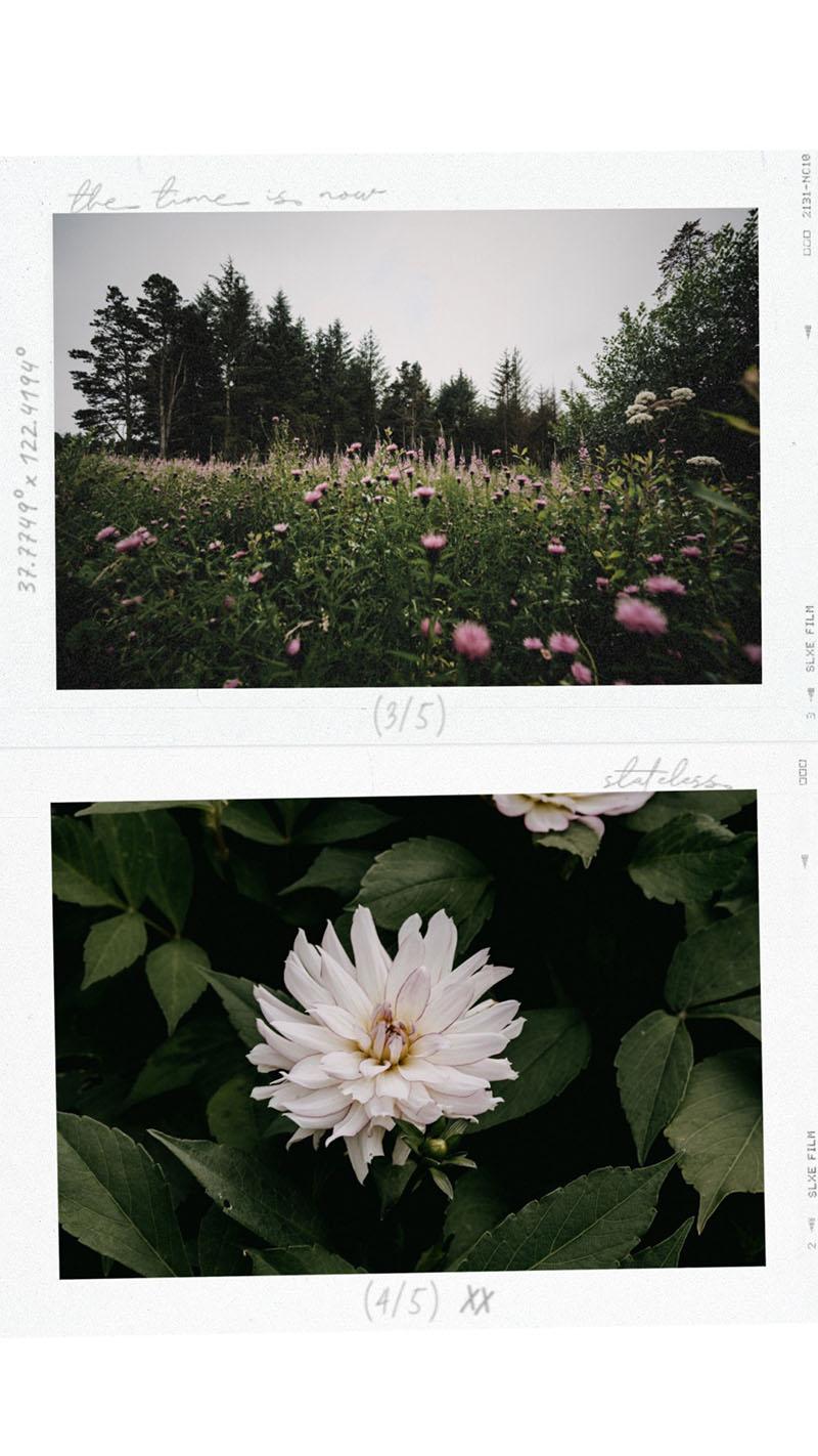 Instagram frame ideas рамки для историй в инстаграме district-f.org 1