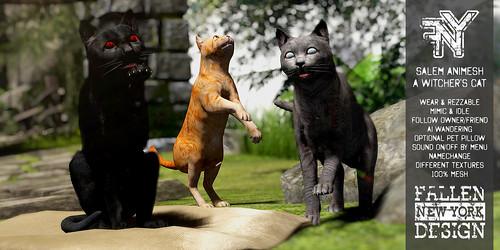 FNY Designs - Salem a Witcher's Cat - Animesh Companion